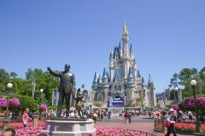 Disney-Canopy-Oaks